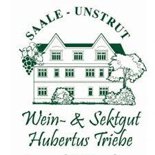 Hubertus Triebe